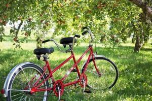 Mantova, un giro in bici con la famiglia