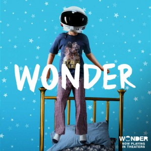 Cinema alla Cano / Wonder