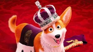 Rex, un cucciolo a palazzo